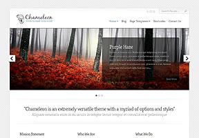 Chameleon Theme Wordpress - Tema modello per realizzare il tuo sito internet