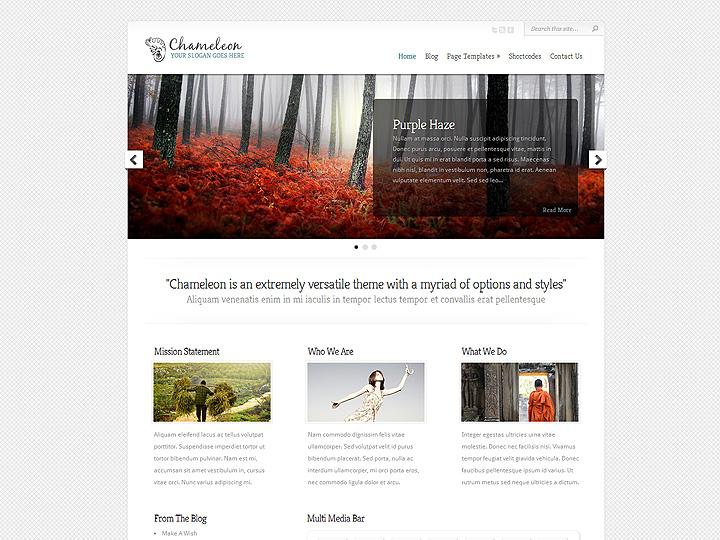 Bello ed elegante per un webdesign classico e professionale
